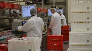 Schlanke Prozesse für frische Produkte