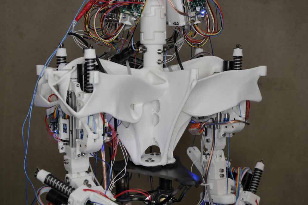 Die mit generativem Design entwickelte Hüfte von Roboy 2.0 wurde im 3D-Verfahren gedruckt und ähnelt dem menschlichen Knochen bis ins Detail.<br/>Bild: Autodesk GmbH