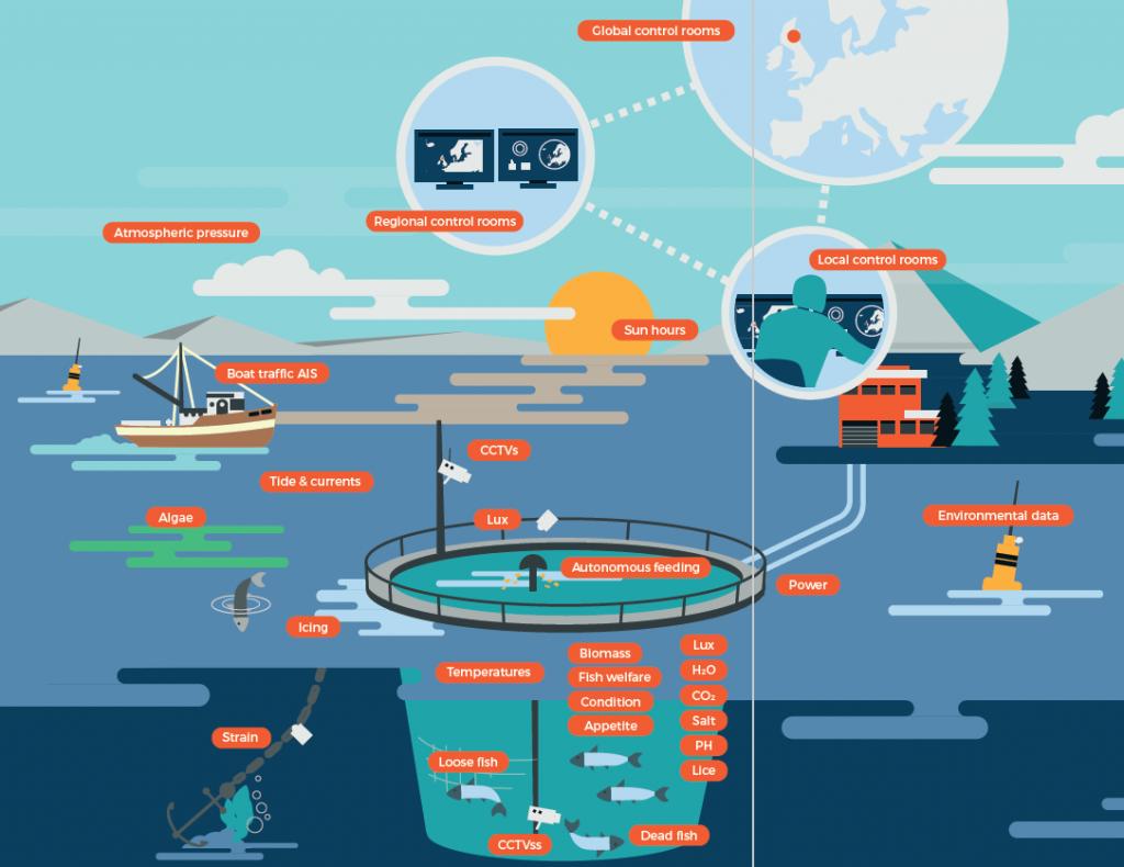 Bei der Fischzucht gibt es erstaunlich viele Parameter, die zu ihrer Optimierung beitragen könnten. Durch ein interoperabel ausgelegtes Scada-System lassen sich jedoch bereits mit überschaubarem Aufwand hervorragende Ergebnisse erzielen. (Bild: Certec EDV GmbH)