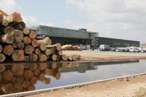 Die Pollmeier Massivholz GmbH & Co. KG betreibt die nach eigenen Angaben größten Laubholzsägewerke Europas. Die Arbeit strukturiert der Standort in Aschaffenburg mit einem hierarchieübergreifenden Shopfloor Management. (Bild: Pollmeier Massivholz GmbH & Co. KG)