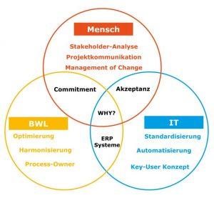 Zusammenspiel von Mensch, Betriebswirtschaft und IT in einem ERP-Projekt. (Bild: Pikon Deutschland AG)