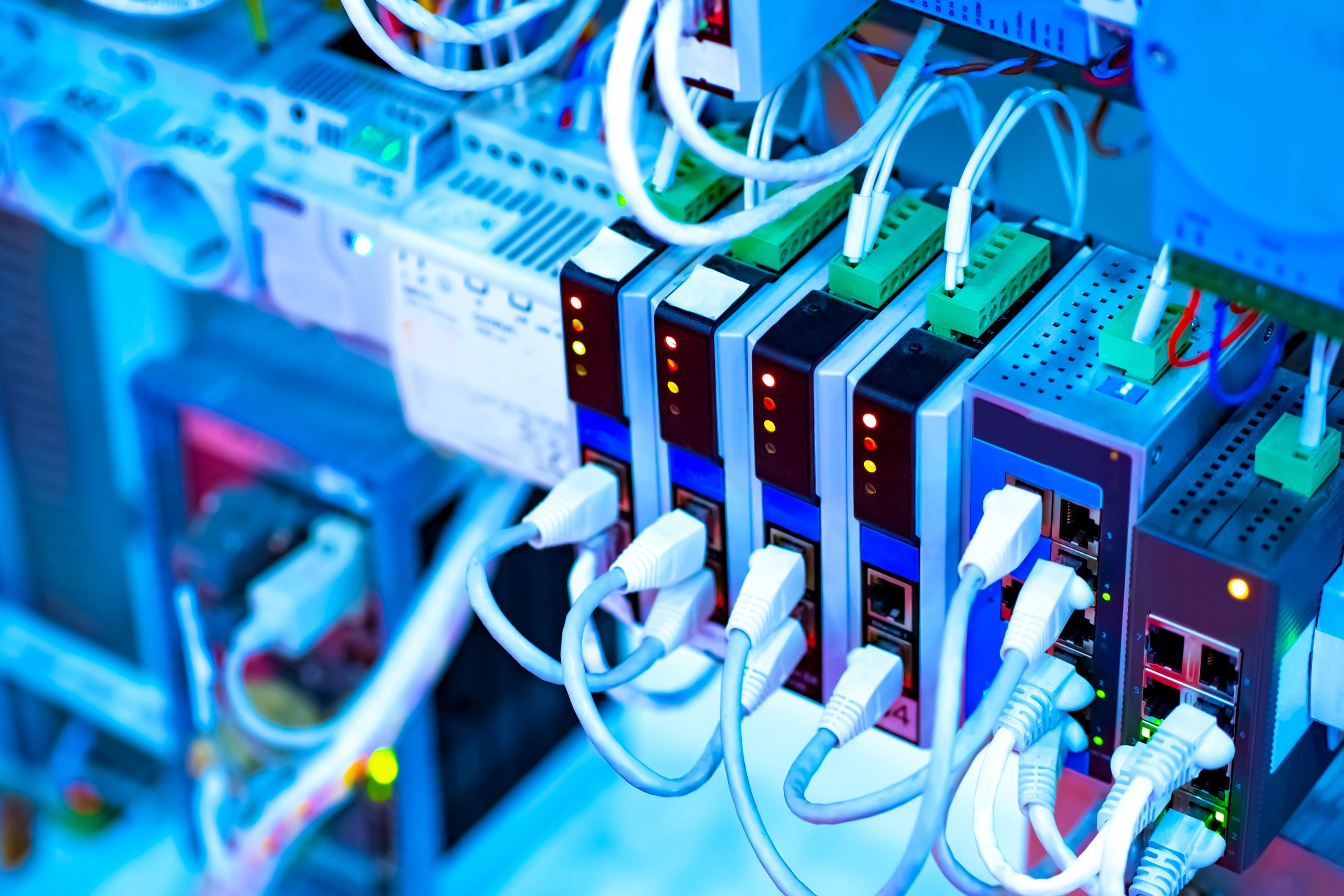 Bild: ©Grispb/stock.adobe.com