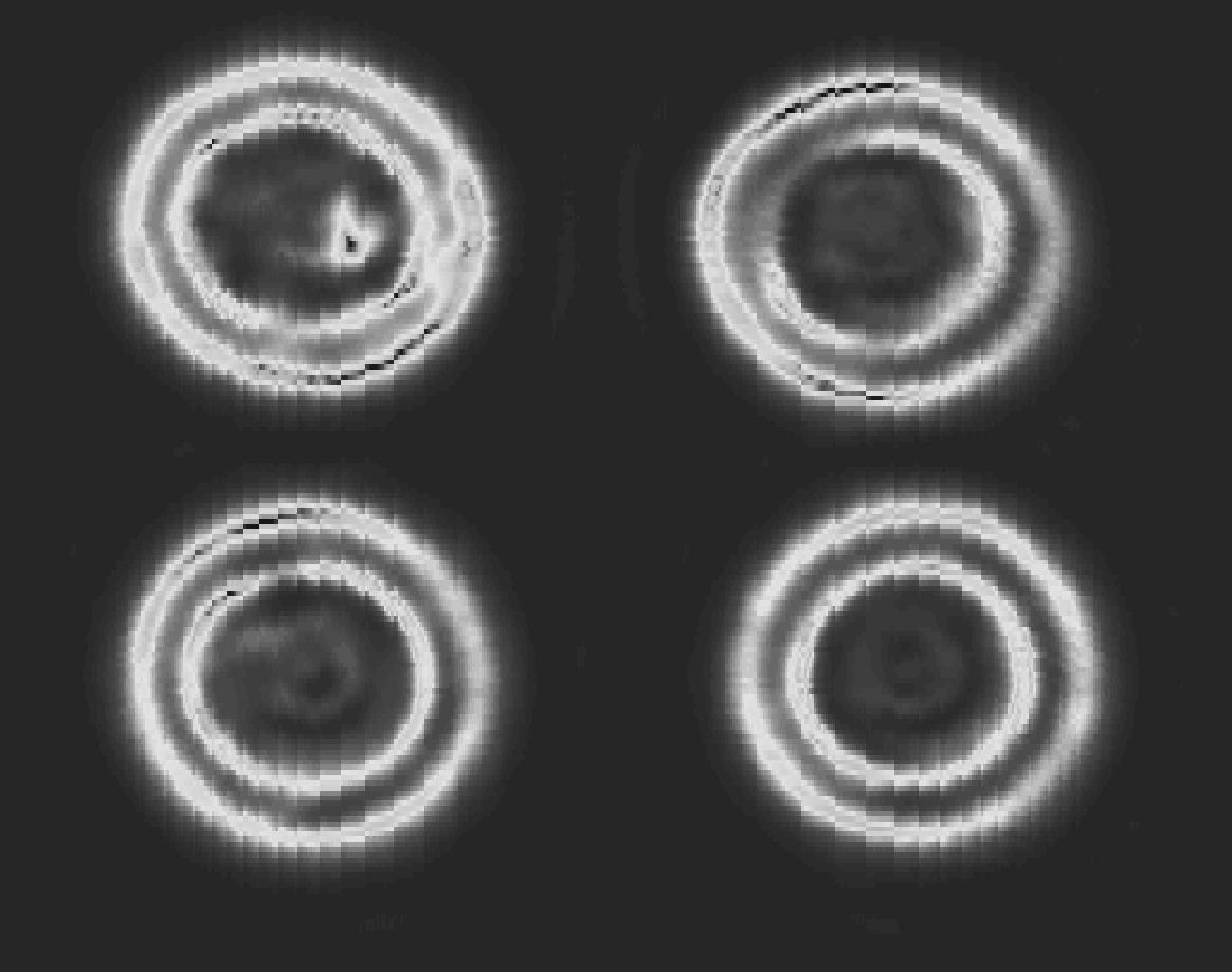 Im Radarbild lässt sich ein zuvor in der Schokocreme platzierter Glassplitter erkennen. (Bild: Fraunhofer FHR)