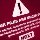 Cyber-Sicherheitsnetzwerk startet im Oktober
